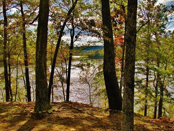 PA LD Point Autumn